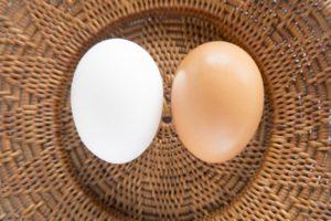 ふたつの卵