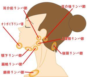 妊娠初期症状として、首の痛み・肩こりが出たら