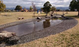 鏡ヶ池公園の水辺
