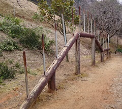 岡岳公園の遊具