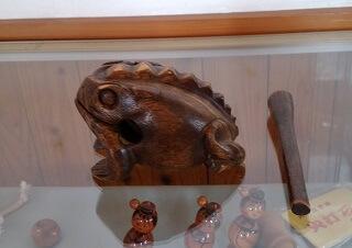 竜北公園の管理棟内のカエル