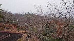 つつじヶ丘公園の展望台
